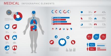 fisiologia: elementos infogr�fico m�dicos Ilustração