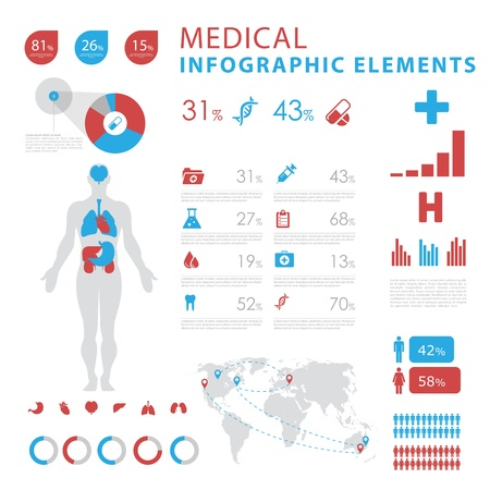 human internal organ: medical infographic elements Illustration