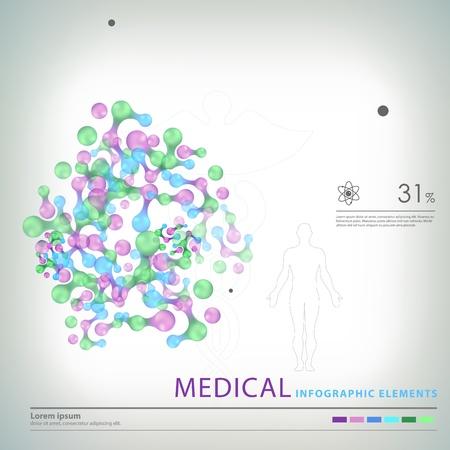 organos internos: elementos médicos infografía