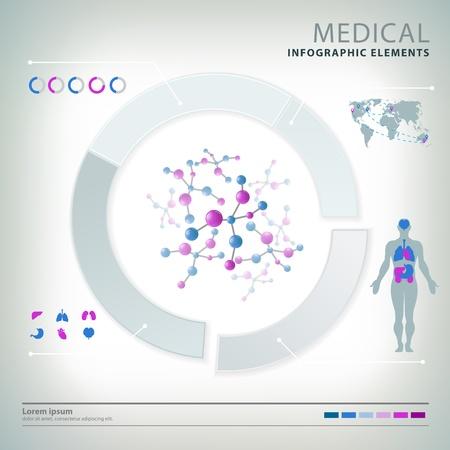 organos internos: elementos m?dicos infograf?a