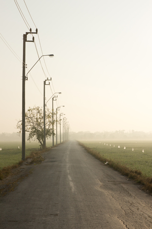 Long country asphalt road in Thailand Stock Photo