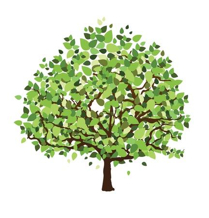 lone tree: Tre