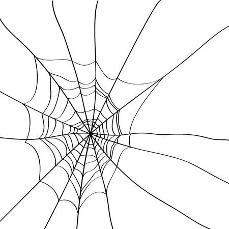 spider web background: Spider web isolated on white background - Vector