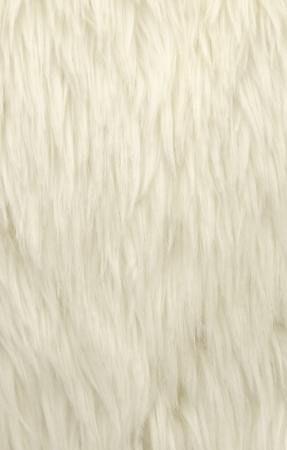 White wool of ainmal background photo