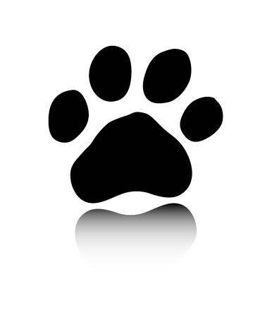 silueta tigre: La pata de negro sobre fondo blanco