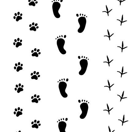 Footprint on white Vector