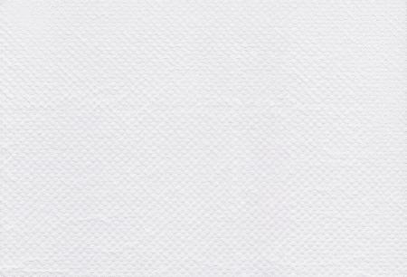 흰색 조직 종이의 질감