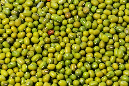 munggo: Green mung beans closeup background
