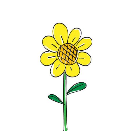 sun flower: Hand drawn sun flower on white background