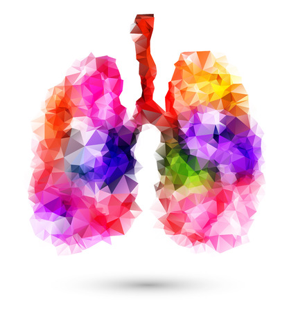 pulmones: Abstract human lungs with multicolored polygon on white background