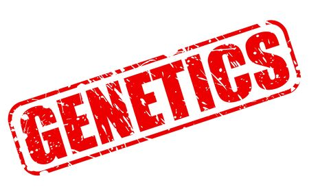 hereditary: GENETICS red stamp text on white Stock Photo