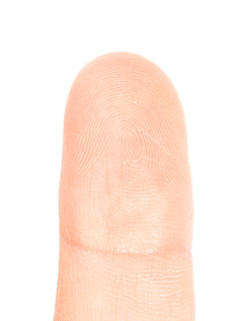 Macro view of a finger print on a human thumb on white background