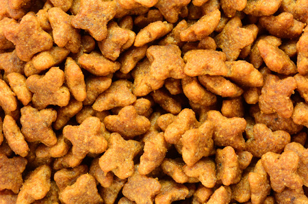 close up food: Dried dog food texture background Stock Photo