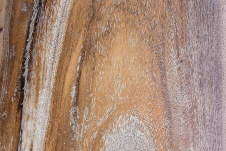 Texture of wood background close up