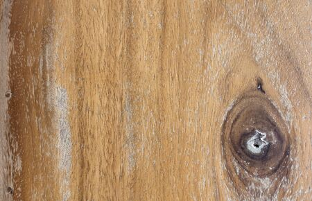 Texture of wood eye background