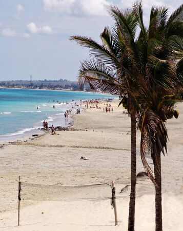 View of a tropical beach with coconut palm trees in Havana, Cuba                                photo
