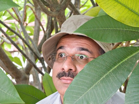 sun hat: Private detective with sun hat hiding in the bushes