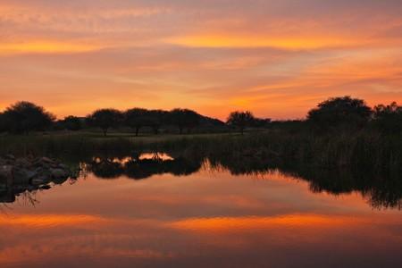 chose: Southern African bush vicino al lago, Botswana, orizzonte nel mezzo scelto cielo o terreni