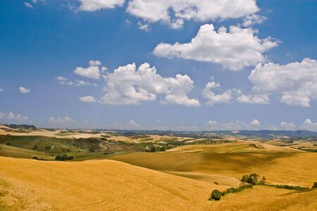 copse: Tuscany hills with blue sky and white clouds Stock Photo