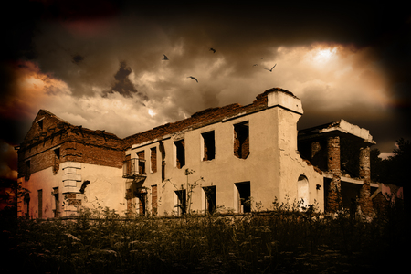 olden day: The old destroyed building above which birds fly Stock Photo
