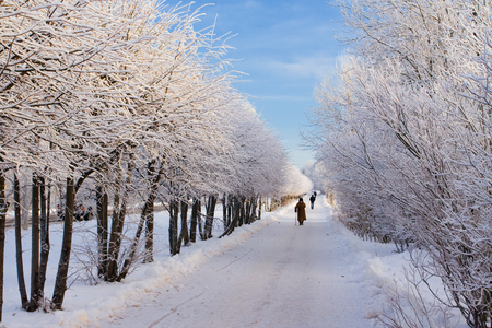 limp: Winter path in park on which people walk Stock Photo