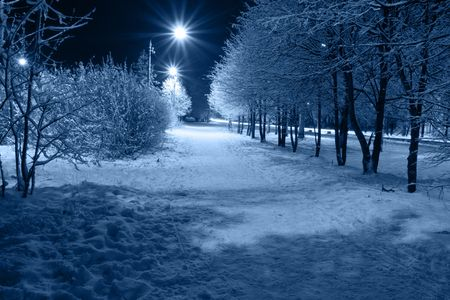 winter storm: The city path which is taking place on avenue, covered with a snow. Stock Photo