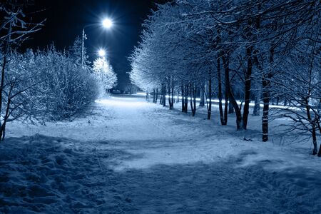 magical equipment: The city path which is taking place on avenue, covered with a snow. Stock Photo