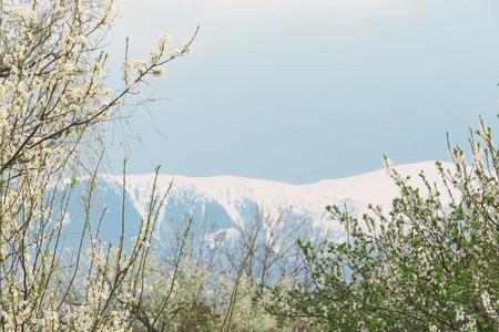 Spring mountain