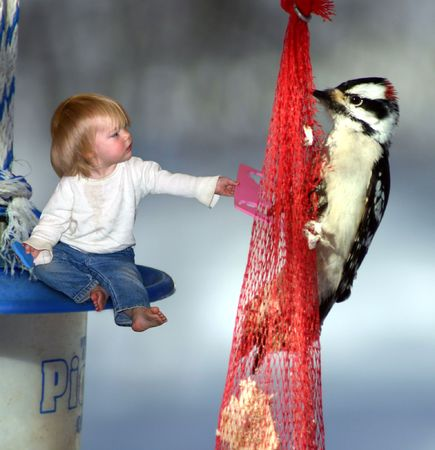 a little girl offering her toy to a bird 스톡 콘텐츠