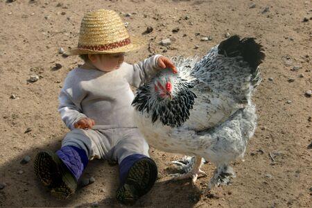 닭 한 마리 주위에있는 어린 소녀 스톡 콘텐츠