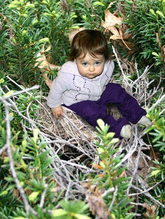 Une petite fille d'escalade sur un nid  Banque d'images - 414624