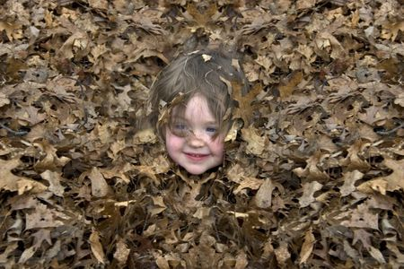 a little girl in a leaf pile