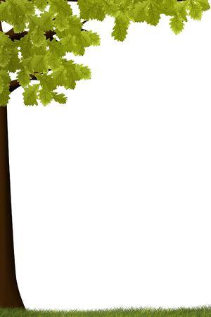 een illustratie van de zomer boom geïsoleerd op wit