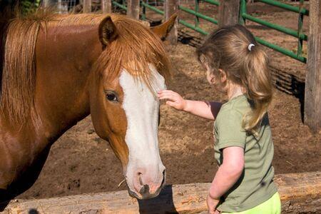 a little girl petting a beautiful horse Stock Photo