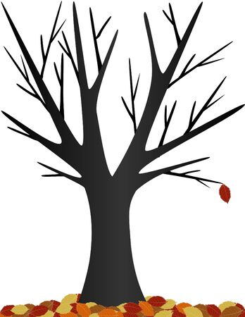one lone leaf hanging from a bare tree