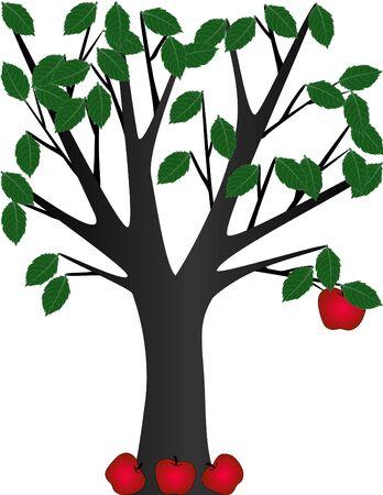 Una última manzana colgando de un árbol  Foto de archivo - 1566438