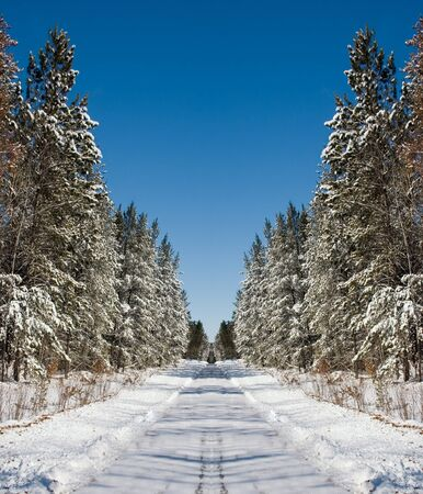 a snow winter road surrounded by trees Stock Photo - 1566441