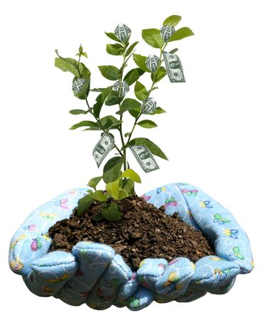 monies: hands holding potting soil and a plant