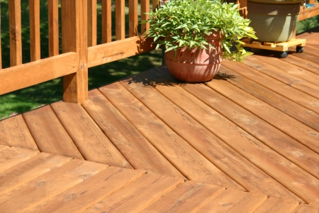 a pine colored deck with some plants