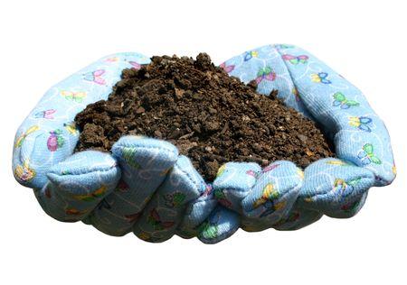 gardening gloves: hands in gardening gloves holding potting soil