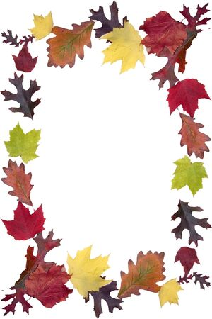boarder: a frame a beautifully colored autumn leaves Stock Photo