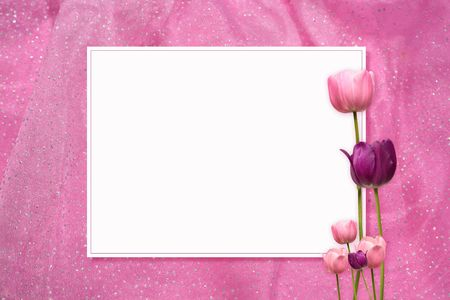 feminine: a frame with tulips on a pink background