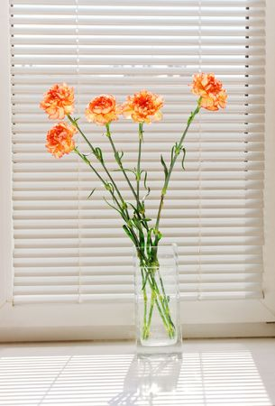 sinlight: a bunch of orange carnation on window-still Stock Photo