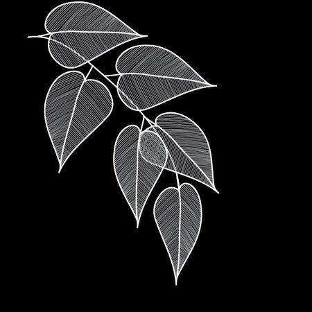 background art: Stylish leaf backgrounds