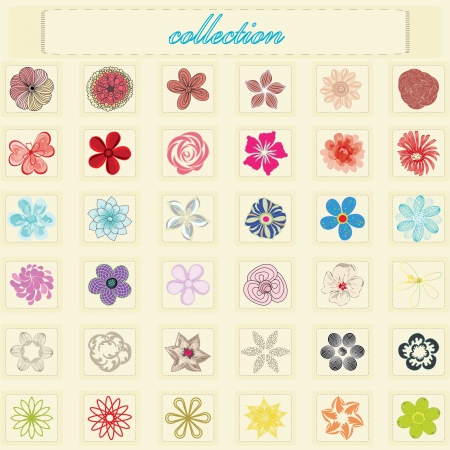 Abstract collection flower background Vector