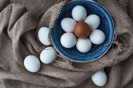 Ecological natural fresh eggs collected in the plate for cooking Stock Photo