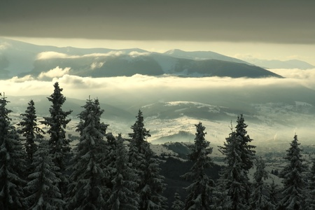 Winter landscape in the mountains photo