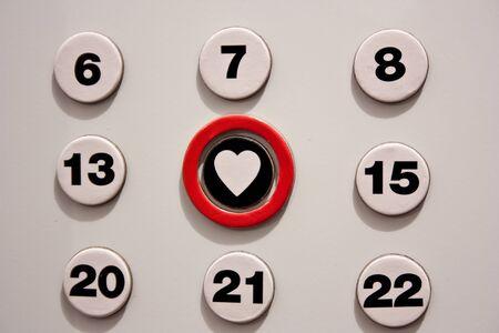 valentine s day photo