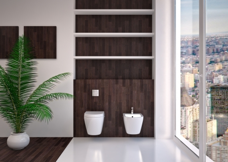 Modern interior  bathroom in house, apartment Stock Photo - 20112550