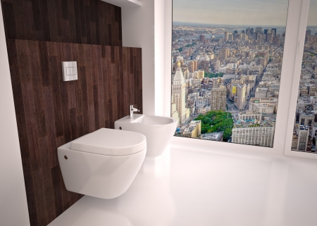 Modern interior  bathroom in house, apartment Stock Photo - 20112548